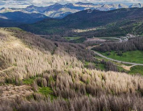 Letter from Village at Wolf Creek irks environmental groups
