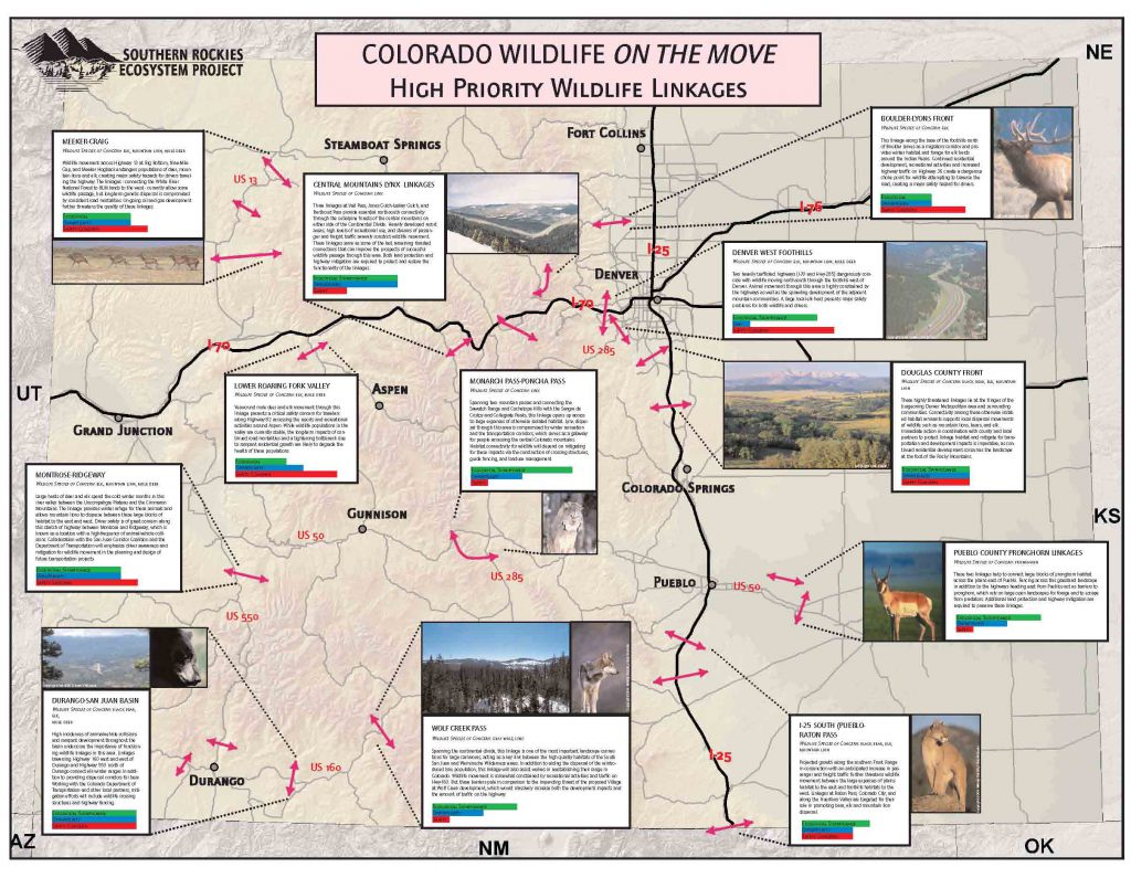 Figure 5: High priority linkages identified in Colorado's statewide connectivity assessment. A total of 176 linkages were identified and prioritized across the state.