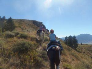 Horseback ride through Bridger-Teton National Forest