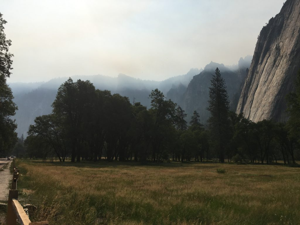 Meadow with trees and mountains silhouetted in the background obscured by smoke.