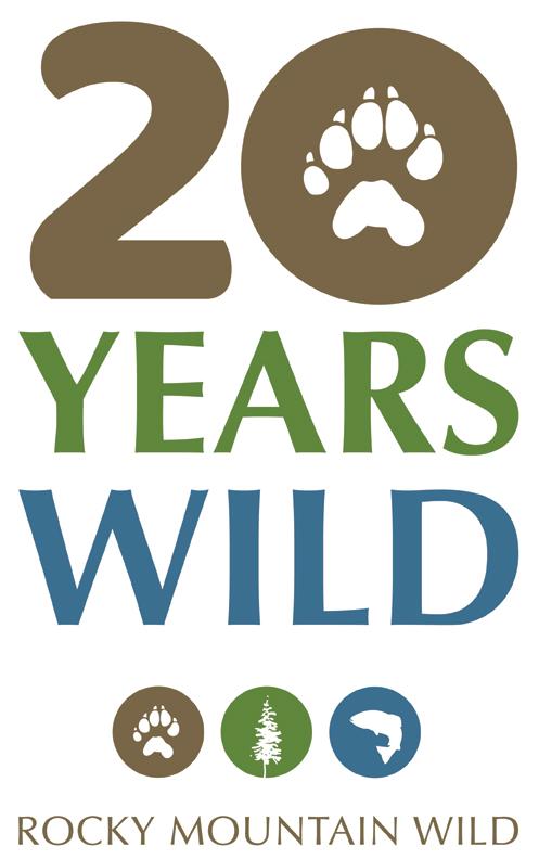 20 Years Wild Logo