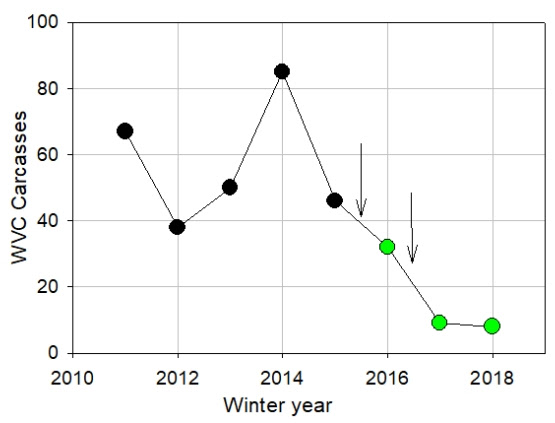Graph showing the 90% reduction in WVCs with mule deer and elk in the project area