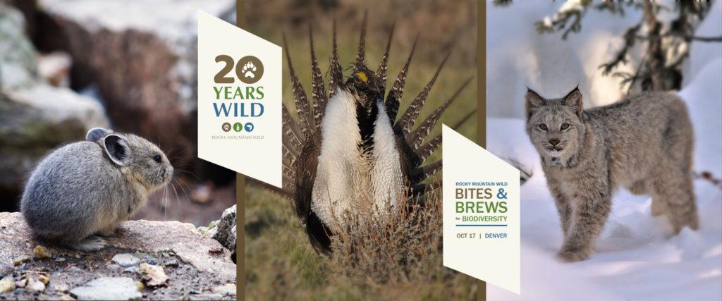 Bites & Brews for Biodiversity Banner
