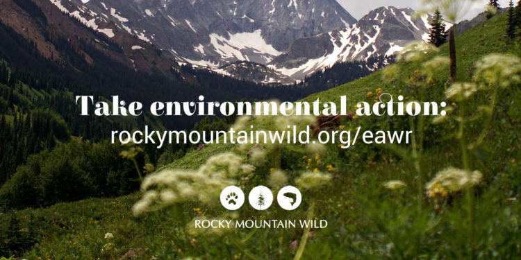 Environmental Actions Weekly Round Up