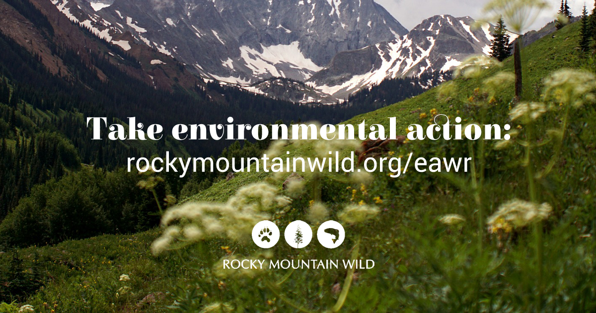 Take Environmental Action
