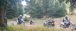 ATVs and motorcycles in the Pike National Forest. Photo courtesy of Wild Connections.