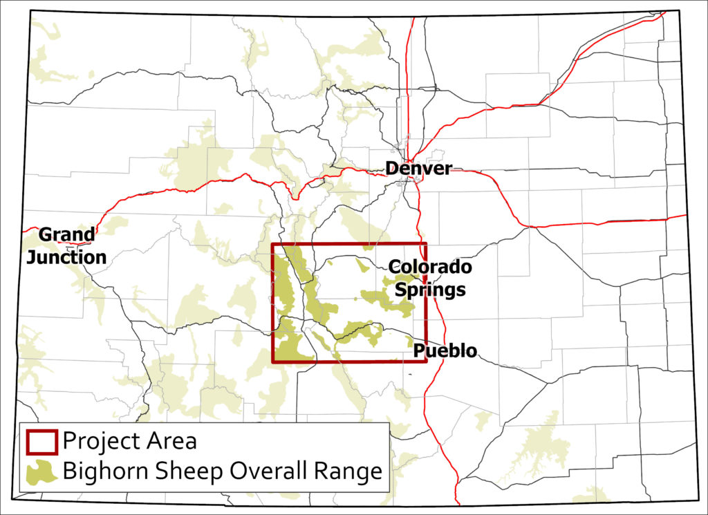 Central Colorado Bighorn Sheep Survey Area Overview Map
