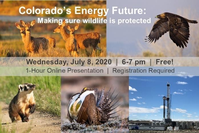 Colorado's Energy Future: Making sure wildlife is protected