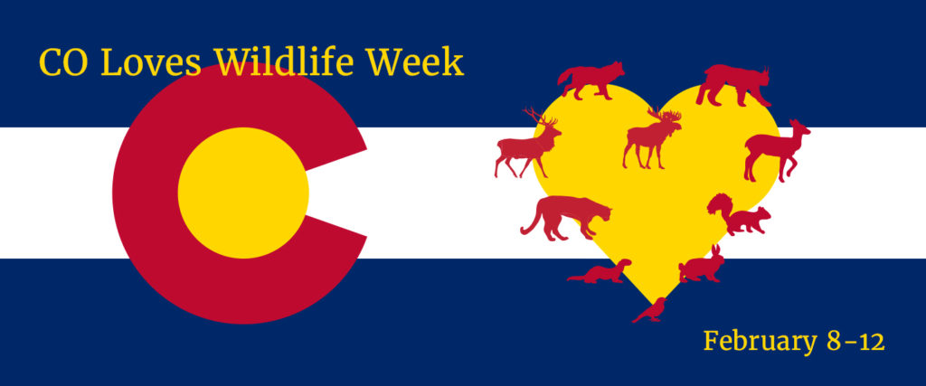 """Colorado flag next to a heart with different Colorado species lining the outside of it. Text says: """"CO Loves Wildlife Week, February 8-12."""""""