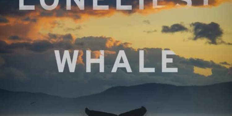 Call2Action TalkBack: The Loneliest Whale: the Search for 52, Jun 25